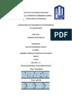 fenomenos-lab-reynolds.docx
