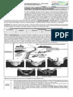 7° Guía 8 y 9 Tipos nutrición -Nutrición algas, hongos, bacterias. Eutrofización humedales