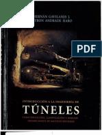 1 Introduccion Ingenieria de Tuneles (2004)