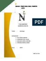 Parámetros Geomorfologicos de una Cuenca