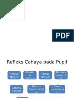 Refleks.pptx