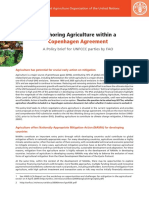 Anchoring Agriculture within a Copenhagen Agreement