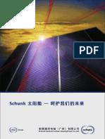 Schunk21 02c2010 03
