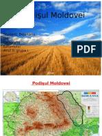 Podisul Moldovei