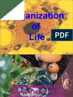 Organization of Life