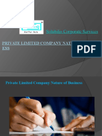 Private Limited Company Nature of Business