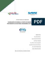 Estudo Técnico de Viabilidade Cogeração Ee Ete Rio Preto