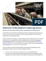 Humane Society of the U.S. report on Turner egg farm