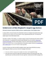 Humane Society of the U.S. report on Turner egg farm