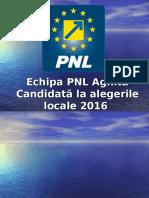 Ppt Prezentare Alegeri 2016 Draft
