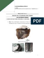 Cuadernillo_Litica (PRACTICAS)