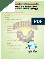 REDUCCION DE TERMINOS SEMEJANTES