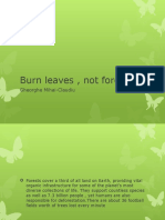 Burn Leaves , Not Forests
