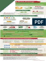 MarketPoint Infographic - Big Data Primer 2013 November