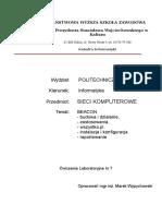 L-07_B Sieci Komputerowe (PWSZ Kalisz, Marek Wypychowski)