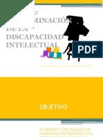 Taller Evaluacion Discapacidad Intelectual