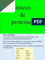 sntesisdeprotenas-100814105948-phpapp02