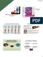 Desarrollo cerebral y Hallazgos de las neurociencias.pdf