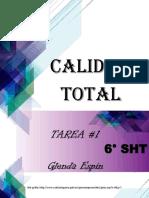 CALIDAD TOTAL SIGNIFICADO