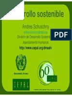 desarrollo-sostenible-2008-1226855837882401-9.pdf