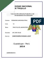 Vicente Muñoz Rossana- Informes1