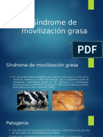 Síndrome de Movilización Grasa