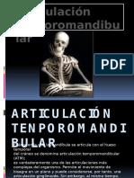 Anatomia articulacion temporomandibular
