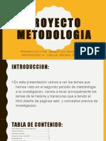 Metodologia (Sebastian Obando Galindo)