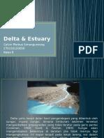 Presentasi Delta & Estuary