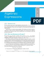 21066413 Algebraic Expressions