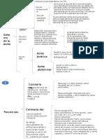 cuadro sinoptico de sistema art (1).pptx