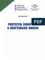 Ion Buruiana.pdf