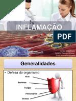 Inflamação_conceitos Gerais