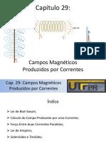 Cap 29 - Campos Magneticos Produzidos Por Correntes