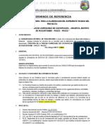 11-TDR. Trcocha Paucartambo 03 (1)