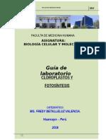 Guias 9 - Cloroplastos y Fotosíntesis.doc