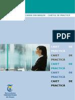 Caiet de Practica Anul-II 2014-2015 (1)