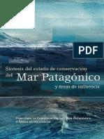 sintesis-mar-patagonico.pdf