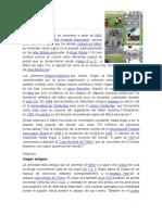 Historia Del Fútbol, basquetbol y voleibol