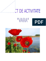 0_2_vara.docx