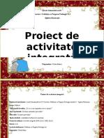 2_proiect_inspectie.docx
