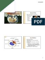 Anexos e gemeos Embriologia estácio.pdf