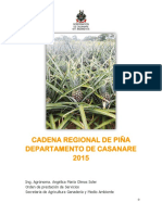 Documento Cadena Piña Casanare