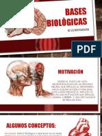 Presentación Bases Biològicas