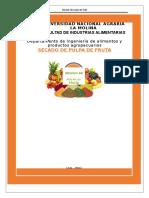 secador de pupa de fruta.docx