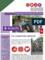 Voluntariado Scout