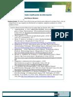 Formato clasificación de información