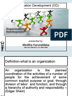 organisation Development and its future