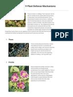 9 Plant Defense Mechanisms Britannica.com