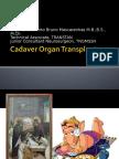 How Tamil Nadu Eradicated Organ Sale